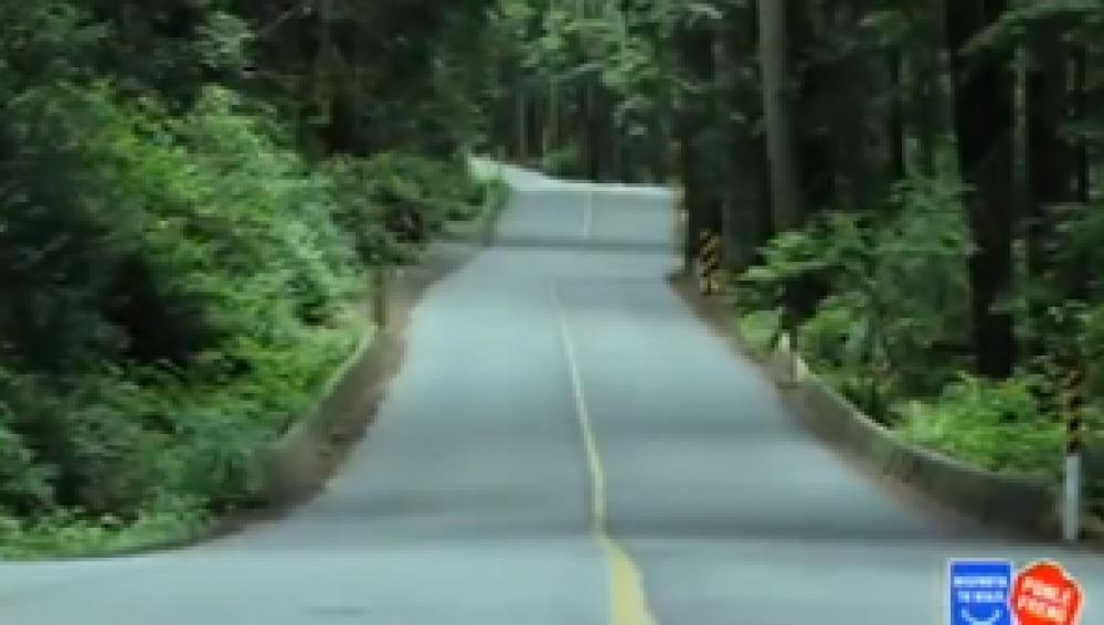 Disfruta tu viaje y compártelo con otros conductores