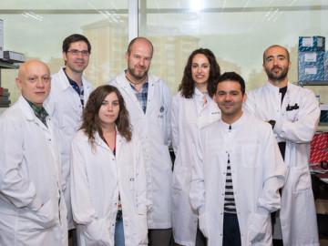 Descubren nuevas claves para optimizar la inmunoterapia del cáncer