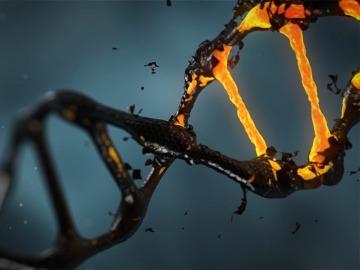 Descubren que una molécula podría actuar como agente neuroprotector
