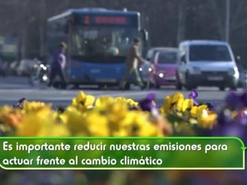 Reducir la huella de carbono, un compromiso de todos