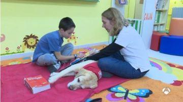 Los perros ayudan a mejorar la lectura de niños con necesidades especiales