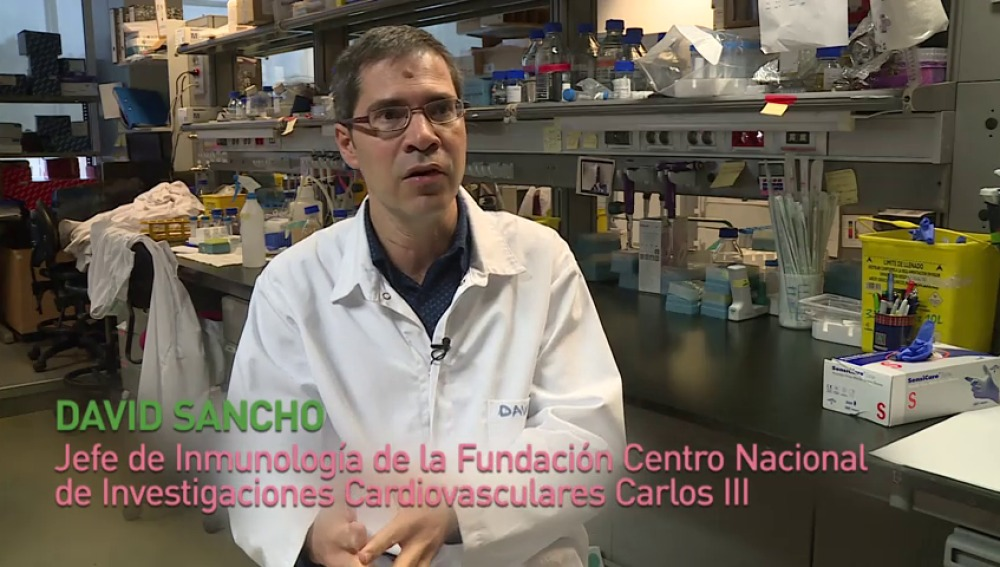 Arkaitz Carracedo y David Sancho, premio 'Joven talento en investigación biomédica'