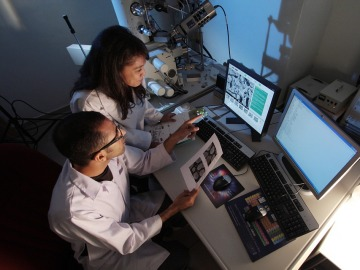 Científicos del CNIO y el CNIC alertan a Rajoy de que su labor investigadora está en peligro