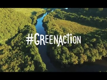 'Green Action', una iniciativa que pide la colaboración de las empresas para reforestar terrenos arrasados por las llamas