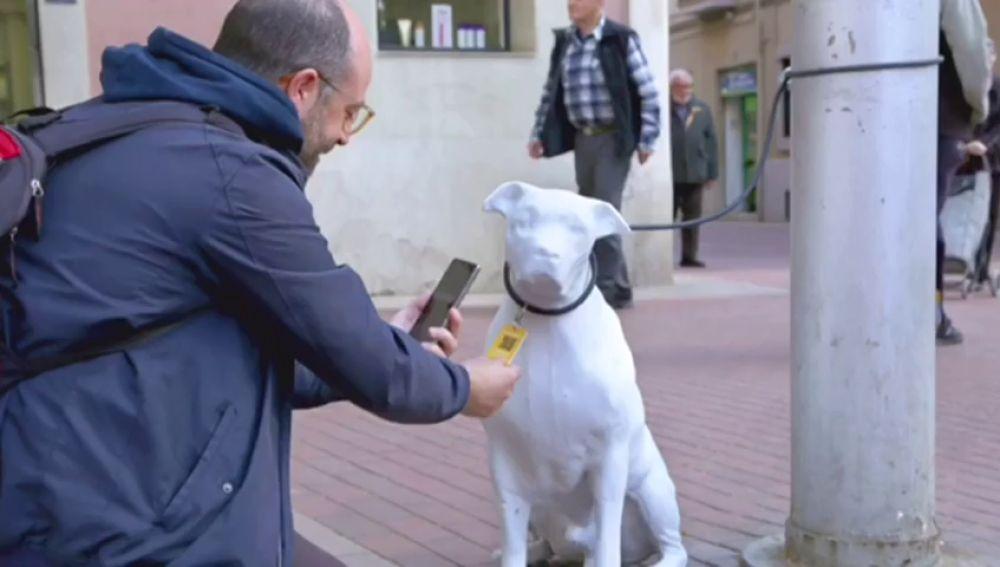 Barcelona promueve la adopción de animales de compañía abandonados con perros de hormigón 'abandonados' en la ciudad
