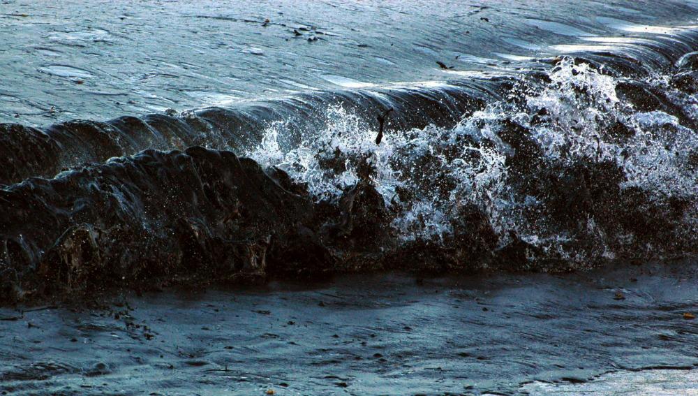 Marea negra en el Golfo de México