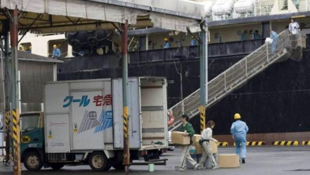 Caza Científica de ballenas en Japón