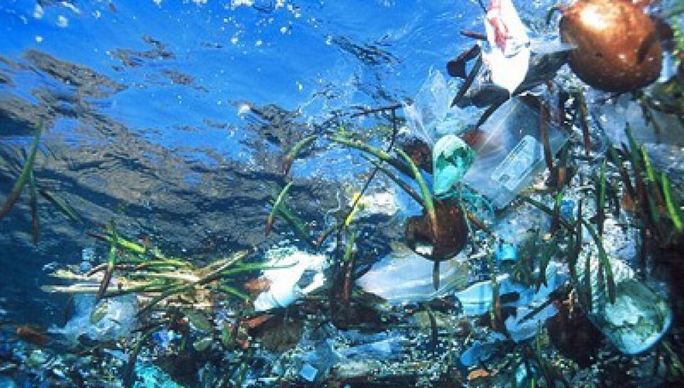 Residuos de basura en el océano