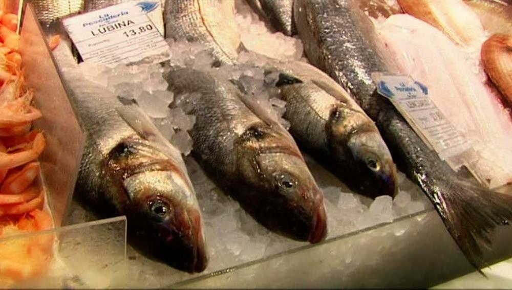 El pescado blanco fundamental