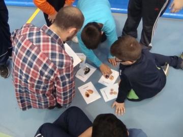 Programa de actividad física en Almoradí