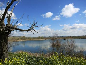 """Los acuíferos están """"al límite"""" en amplias zonas de España (27-07-2014)"""