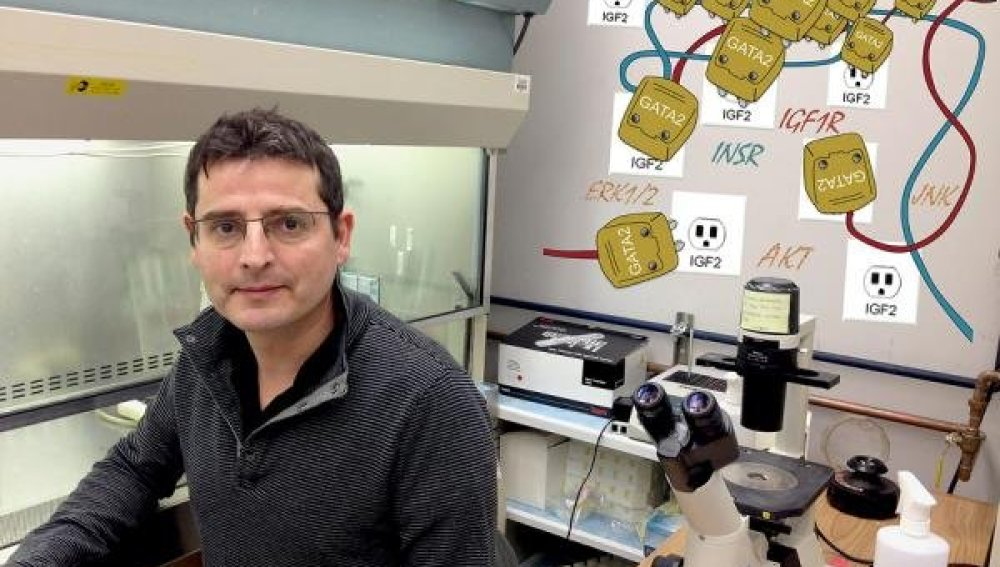 oncólogo e investigador Josep Domingo-Domenech