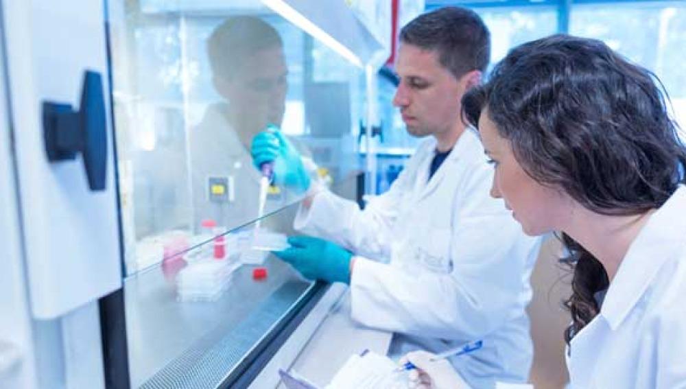 La sacarina podría ser un inhibidor del cáncer