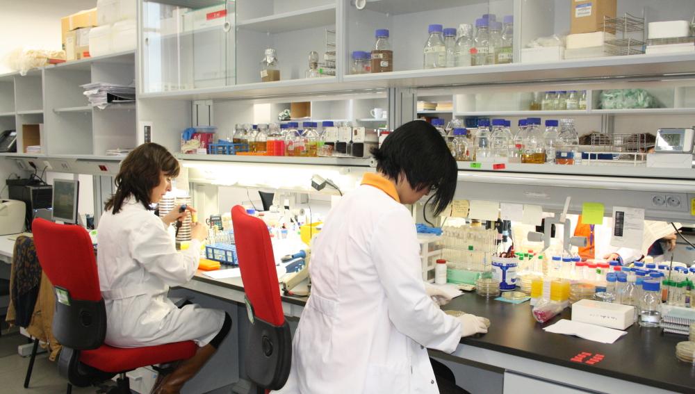 Descubren la causa genética de algunos tipos de cáncer como el de mama y ovario