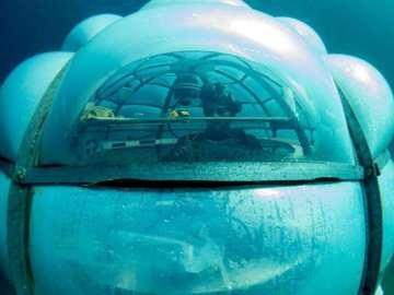 Descubrimos los invernaderos submarinos: innovadores huertos bajo el mar