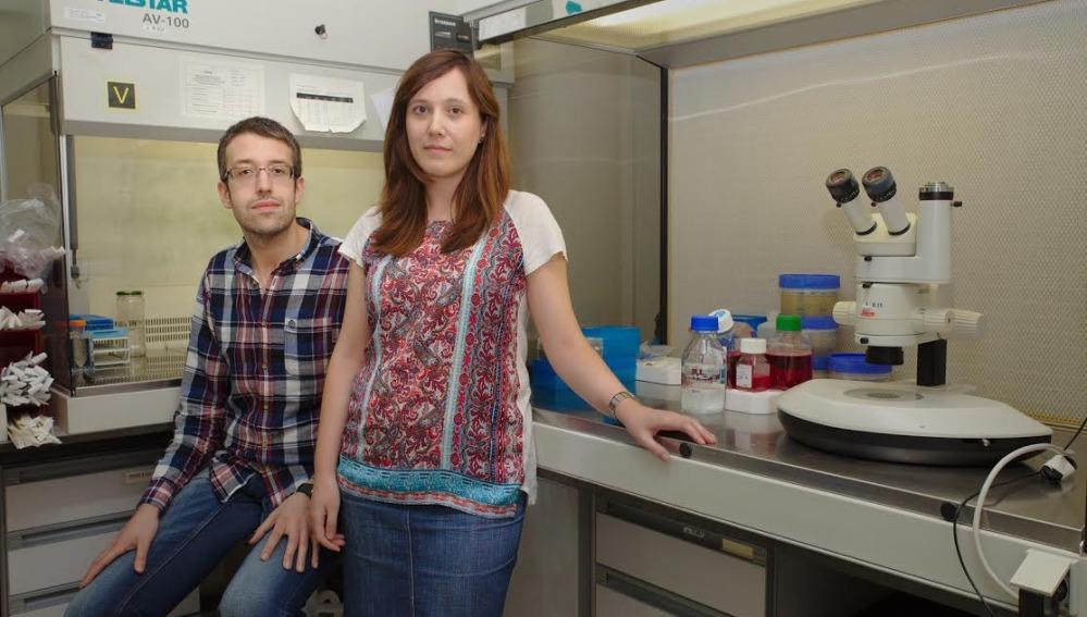 Investigadores constatan la posibilidad de que se desarrolle cáncer sin mutaciones en el ADN