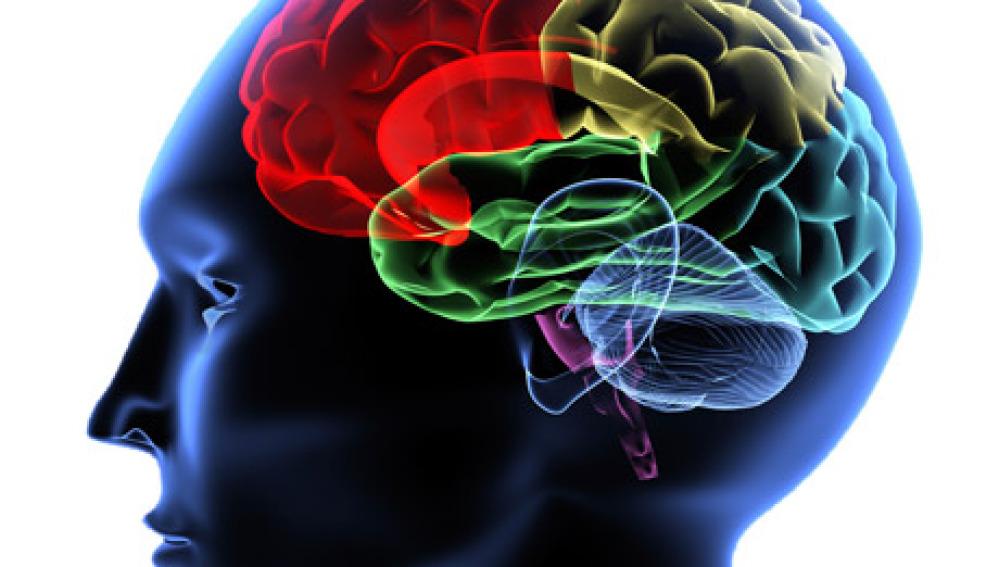 Crean sensores  que monitorean lesiones cerebrales