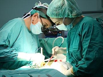 Imagen de un trasplante