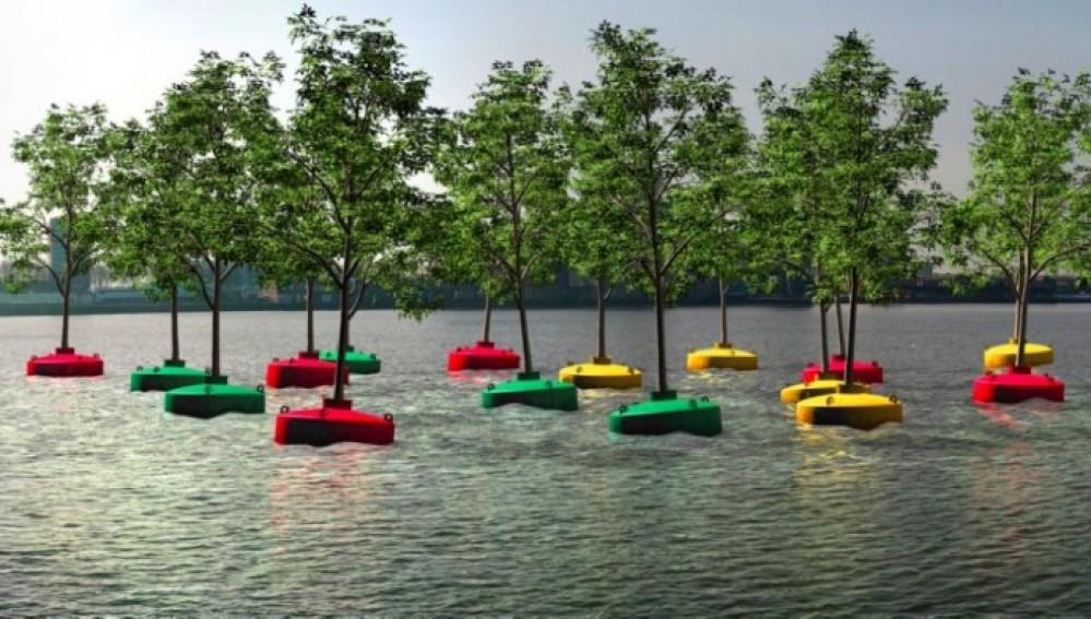 HAZTE ECO | Plantan el primer \'bosque flotante\' en el puerto de ...
