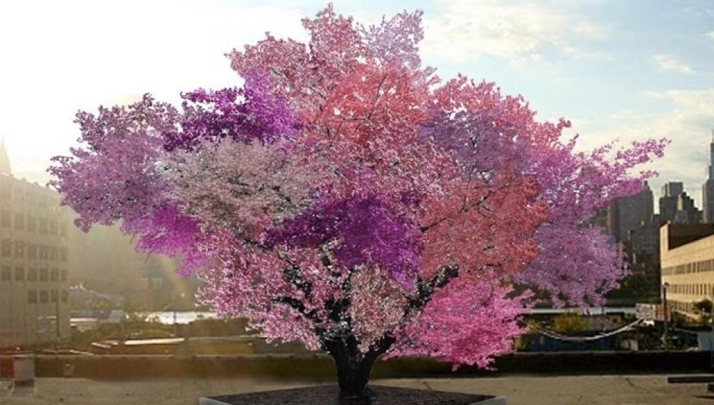 Crean un árbol que da más de 40 tipos de frutos diferentes