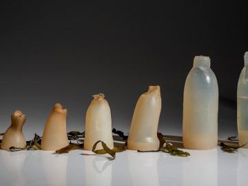 Botellas biodegradables hechas de algas