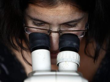 Científicos españoles descubren cómo bloquear la entrada del VIH en el sistema inmunitario