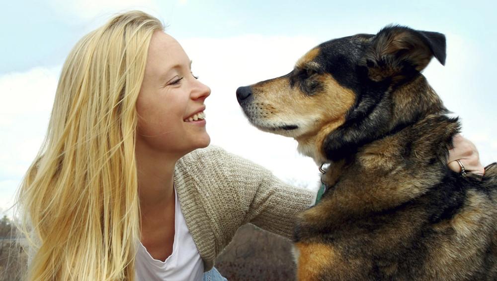 Nueva York aprueba una ley para que las mascotas puedan ser enterradas junto a sus dueños