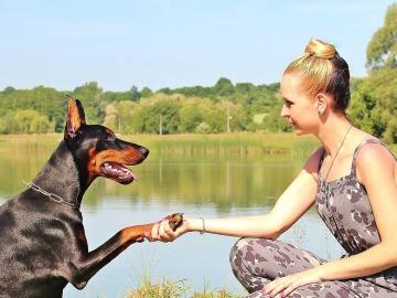Los perros pueden constituir una buena terapia para las personas con enfermedades mentales