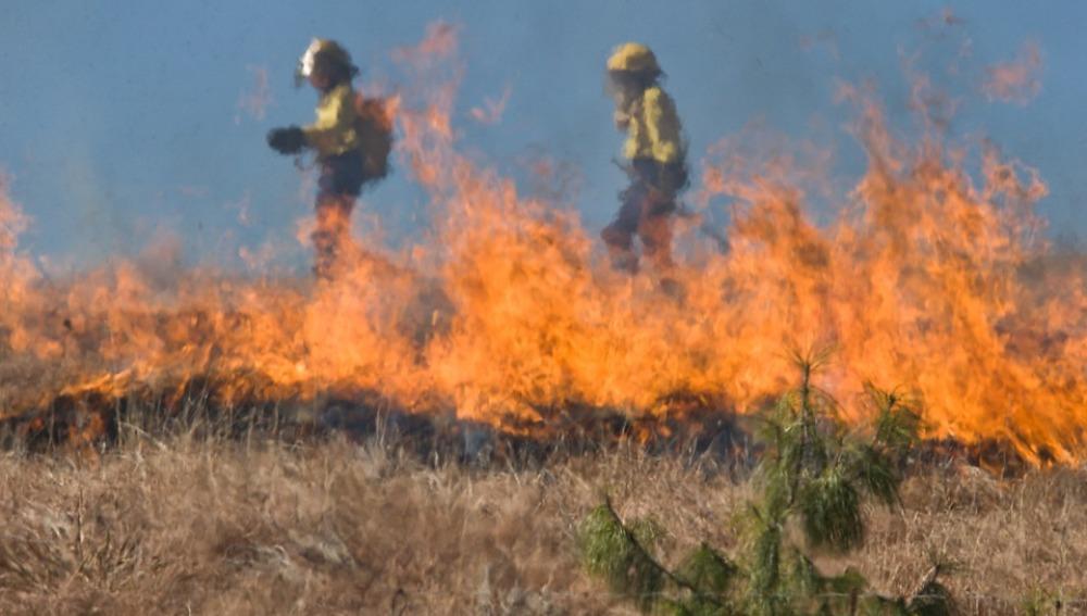 El cambio climático aumentará los incendios forestales en Europa en las próximas décadas