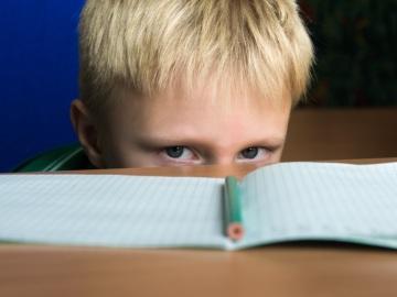 El tratamiento neuropsicologico reduce la agresividad y el aislamiento en ninos con TDAH