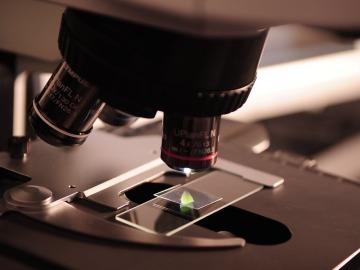 Nace la Fundación Gadea Ciencia, un proyecto para impulsar la financiación de proyectos científicos
