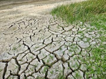 El cambio climático matará en 2100 a unas 260.000 personas