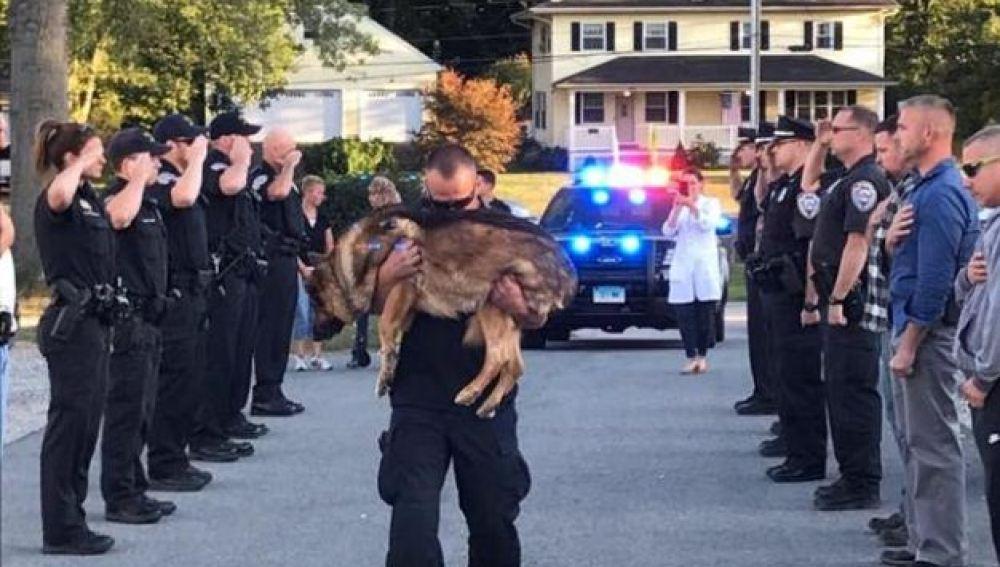 El emotivo homenaje de despedida a Hunter, un perro policía con cáncer