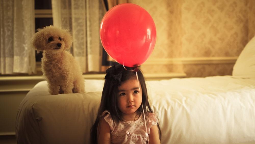 Los niños ingresados en el hospital Rey Juan Carlos de Móstoles podrán recibir la visita de sus perros