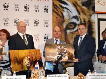 Reintroducirán el tigre en Kazajistán con ayuda de WWF