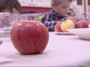 'Del campo al cole', una iniciativa que fomenta una alimentación agroecológica en los centros escolares
