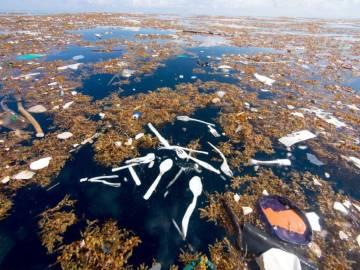 Hallan un mar de plástico en Honduras