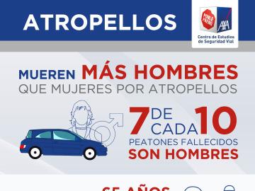 Radiografía de los atropellos en España