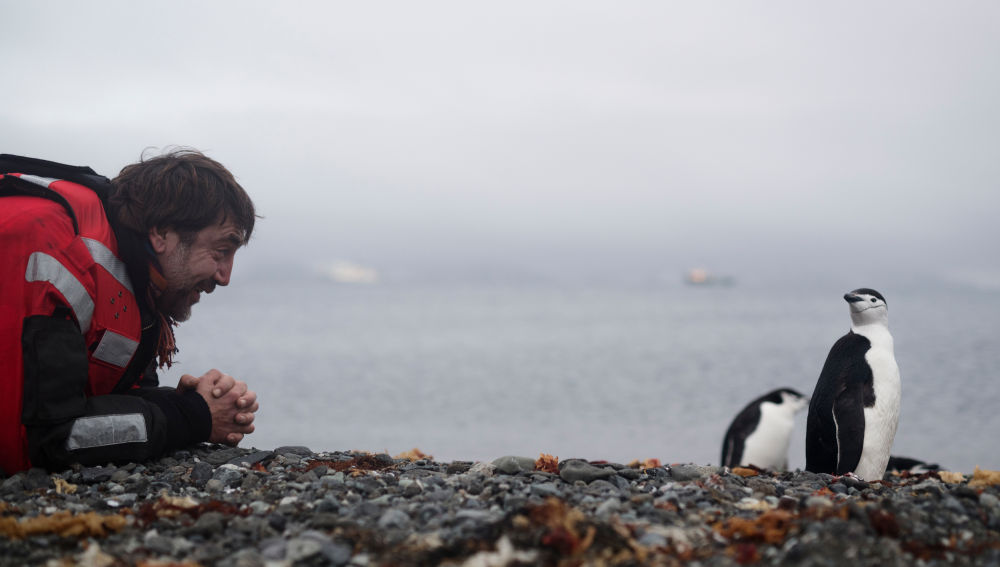 Javier Bardem viajará a Berlín para participar en la comisión que debatirá la creación de un 'Santuario Antártico'